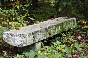 9500384-overgrown-stone-bench-along-a-trail-in-the-woods