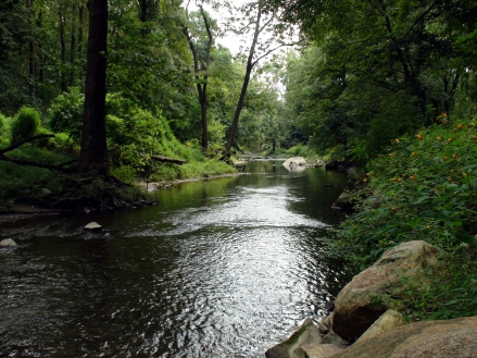 Ridley_Creek_State_Park_9409